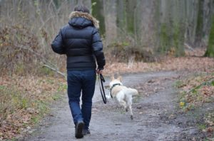 woman walking with her dog in the adirondacks